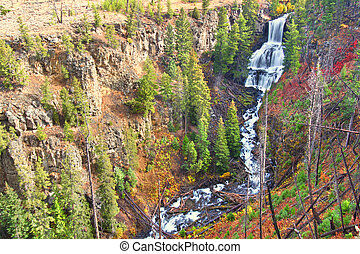 Undine Falls Yellowstone National Park - Undine Falls on an...