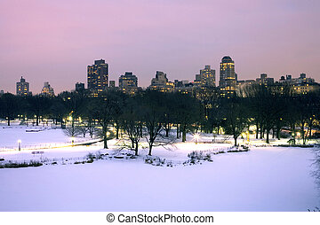 Central Park in winter - Central Park turtle pond area in...