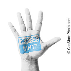 Open hand raised, Pray for MH17 sign painted, multi purpose...