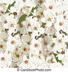 Floral background with blooming cherry plum