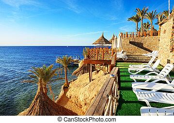 strand, lyxvara, hotell, Sharm, el, Sheikh, egypten