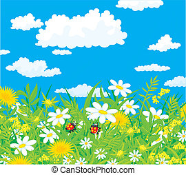 Ladybugs - Vector illustration of a couple of ladybird in...