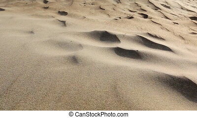 Sand, desert, wind - Wind blowing grains of sand in the...