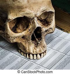 skull business - still life with human skull on finance...