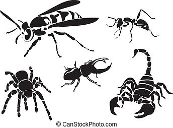 Vector set of insect silhouettes isolated on white