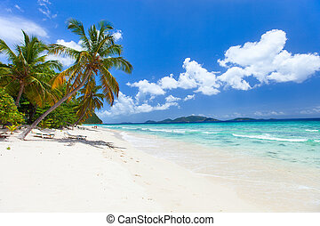 Beautiful tropical beach at Caribbean - Beautiful tropical...