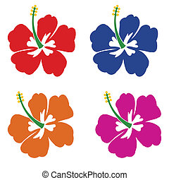 Set of Hibiscus flowers on white background, vector...
