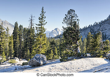 Olmsted Point, Yosemite National Park - Yosemite National...