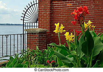Garden scene on the river - Yellow and red irises in a...