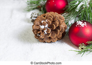 Closeup of a Pine Cone on Snow with Pine Tree Branch and...