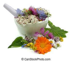 Herbs - Health from nature