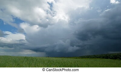 Time-lapse dramatic sky and wheat field Spring, cloudy and...