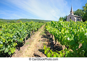France - Chartreuse de Valbonne