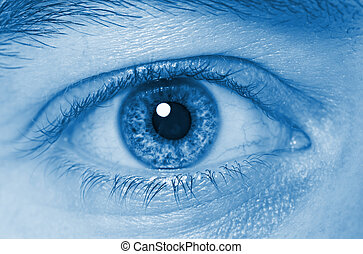eye closeup - fine detail of human eye closeup background