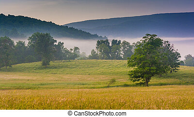 View of trees in a farm field and distant mountains on a...