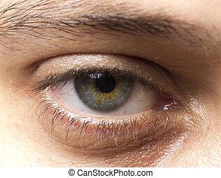 ojo, humano