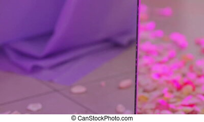 Rose petals on floor mirror - Changing light illuminated...