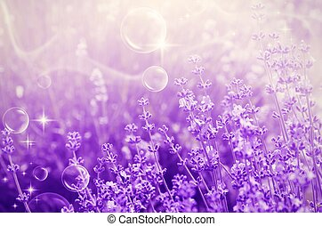 Lavender Mood - Magic Abstract Purple Lavender Blossom Field