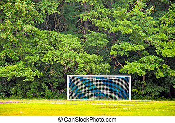 Soocer goal in Forest