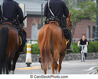 Cops on Horseback - Two cops with full gear on horseback...