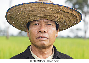 Farmer in the rice field