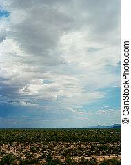 Sonora Desert - The Sonora desert in central Arizona USA