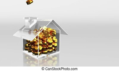 investment saving dollar sign - the house graphic 3d...
