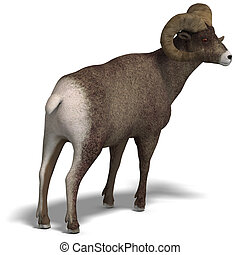 big horn sheep aries - an aries ram with twisted horns. 3D...