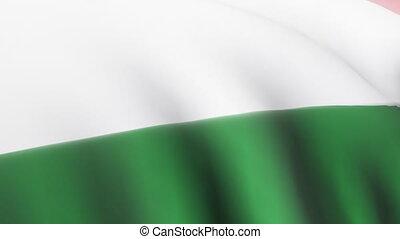 Hungarian Flag - 3D Hungarian Flag