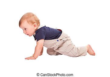 crawl - child crawl isolated on white background
