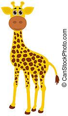 a single giraffe