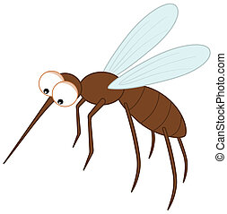 sting mosquito with big eyes
