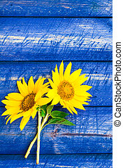 two yellow sunflowers painted fence - Two yellow sunflowers...