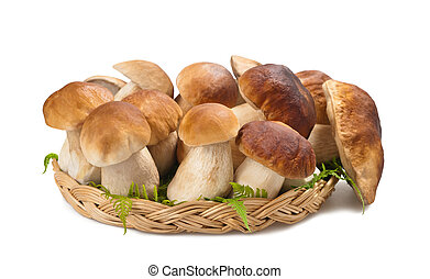 Mushrooms in a basket isolated on white