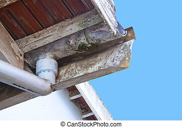 Moldy and Flaking Asbestos Guttering and Downpipe - moldy...