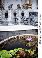 Water flower in a buddhist temple