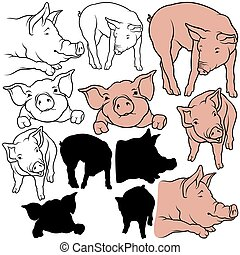 Pig Set 07 - colored hand drawn illustration