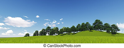 Panoramic Green Grass with cloud and the blue sky. 3d render...