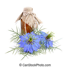 Nigella sativa or fennel flower, nutmeg flower, black...