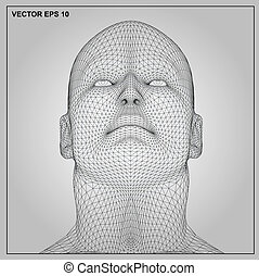 3D wireframe human male head - Vector concept or conceptual...