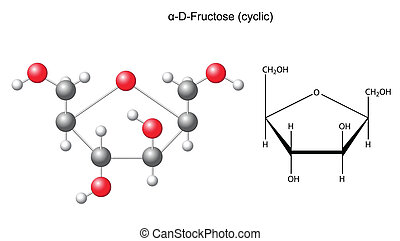 Alpha-D-Fructose - Structural chemical formula and model of...
