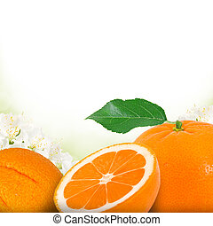 Tangerine - Photo of tangerine and slice with blossom...