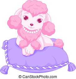 Pink poodle - Glamorous poodle resting on a pillow