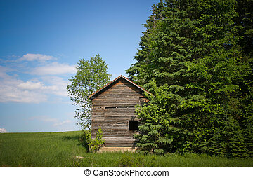Old wood small cabin - A rustic tiny shack on top a the...