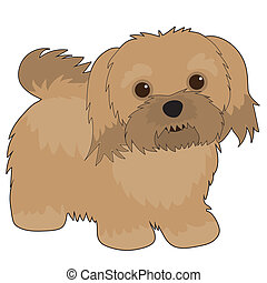 Havanese Illustrations and Clip Art. 23 Havanese royalty ...