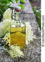 Elderflower syrup sambucus nigra - natural medicine