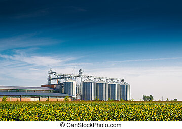 Grain Silos in Sunflower Field Set of storage tanks...