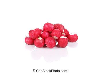 Bunch of fresh radish.