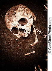 skull and bone - scene crime and buried bone