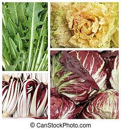 colorido, achicoria, hoja, vegetal, patrón